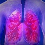 BPCO : mieux vivre avec son souffle