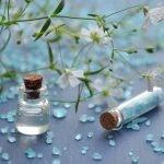 L'huile de bourrache, son utilisation et ses bienfaits