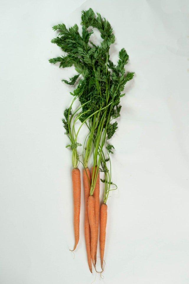 regime-vegetalien
